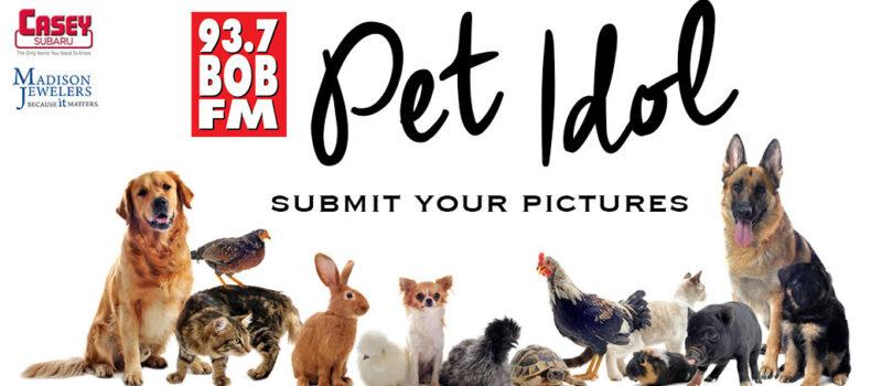 Pet Idol 2021